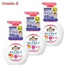 Combo 3 chai nước rửa tay Lion 250ml hương trái cây (250ml x 3)